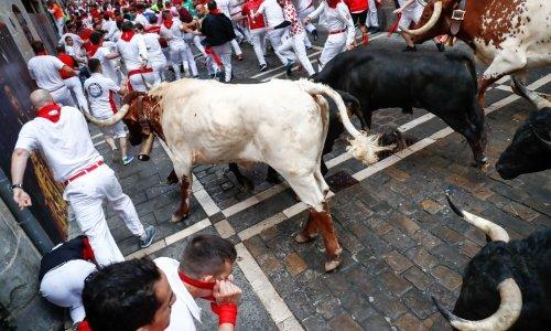 Deseci ozlijeđeni u utrci s bikovima u Španjolskoj