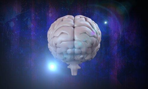 Teže nego što se čini: Možete li riješiti ovu mozgolomku o kratkoj vožnji do škole?
