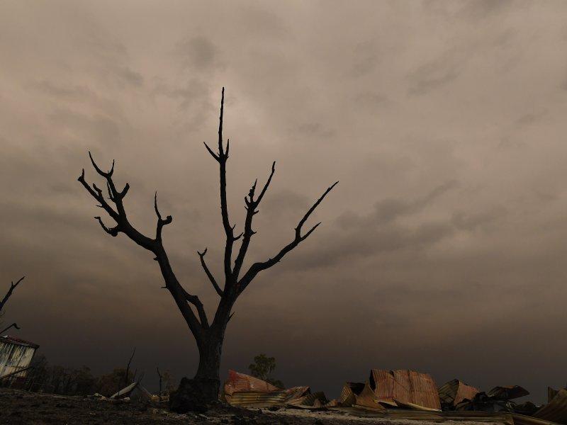 Katastrofalni požar u Australiji 1152847