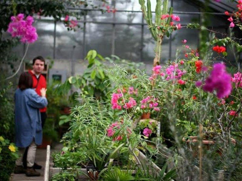 Vandali Unistili Botanicki Vrt U Kastelima Tportal
