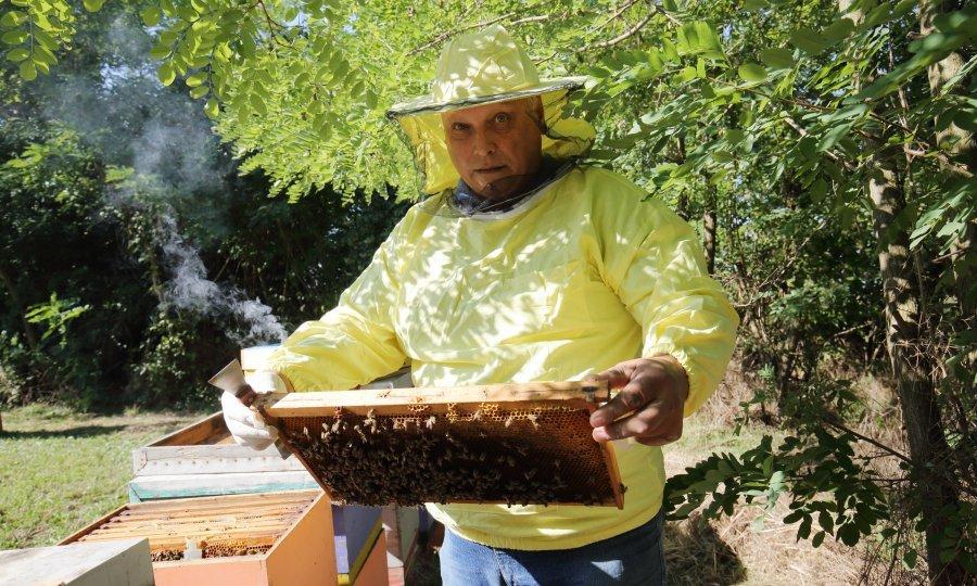 Stanko Čuljak u svojem pčelinjaku nedaleko od Cerića