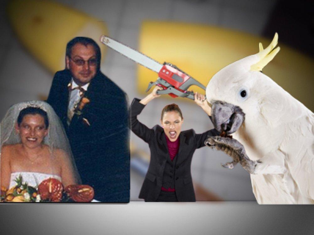 najbolje otvorene web stranice za upoznavanje s brakom