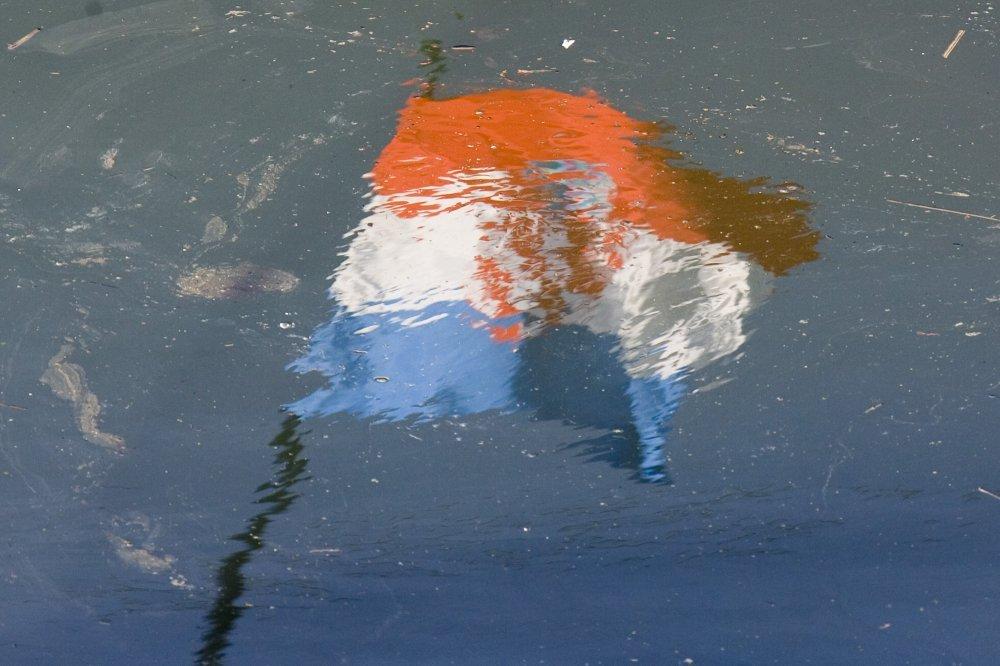 Proslava Oluje Traje Ali Gdje Su Nestale Zastave S