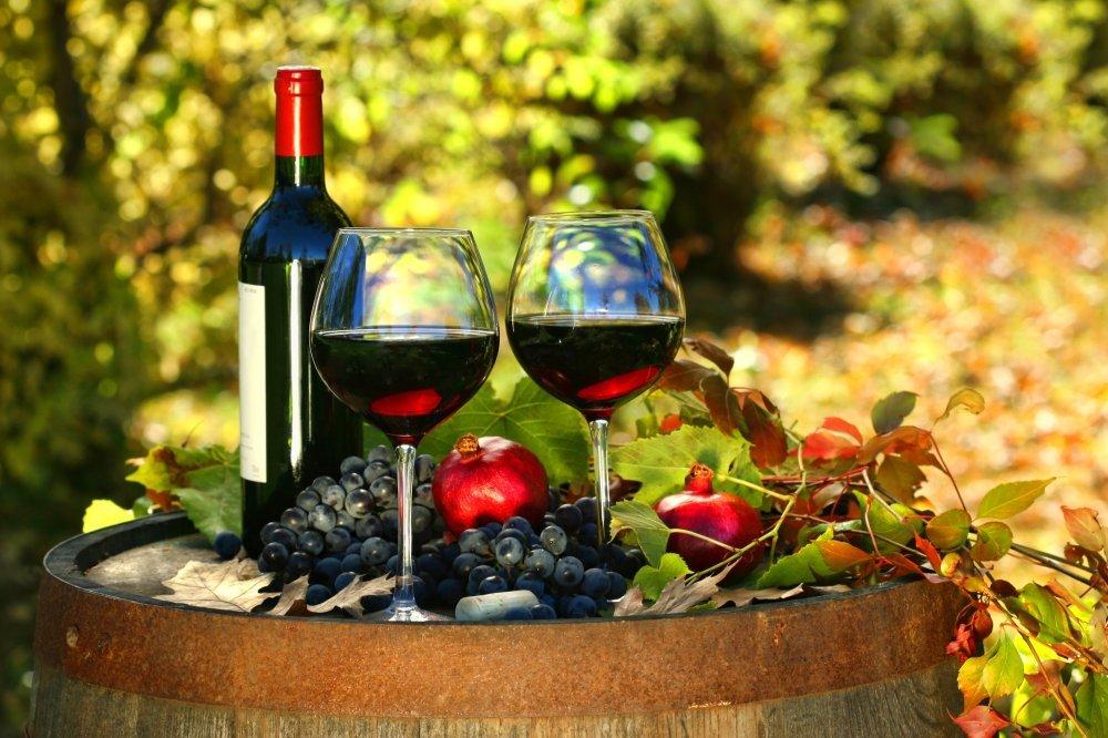 Zagreb je ponovno međunarodno središte ljubitelja vina - tportal