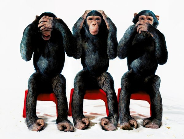 Tri mudra majmuna 62381